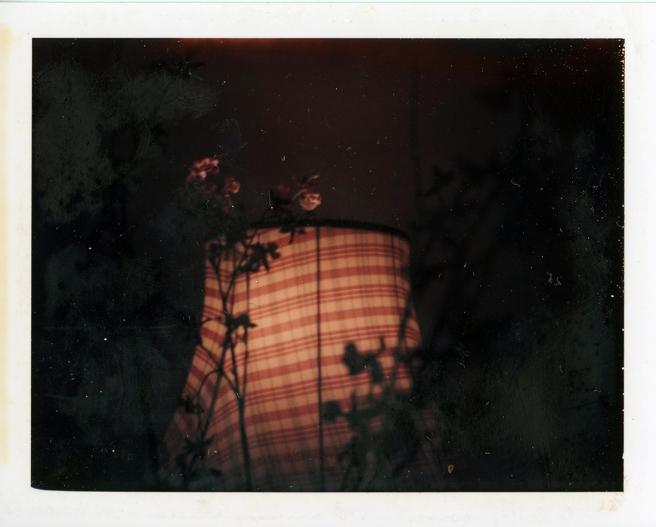 Polaroid057